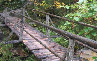 Verändern Sie Ihr Leben mit dem Herbstsemester 2015