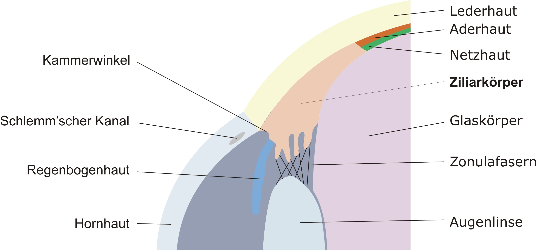 Wunderbar 84 Netzwerkdiagramm Online Bildinspirationen Ideen ...